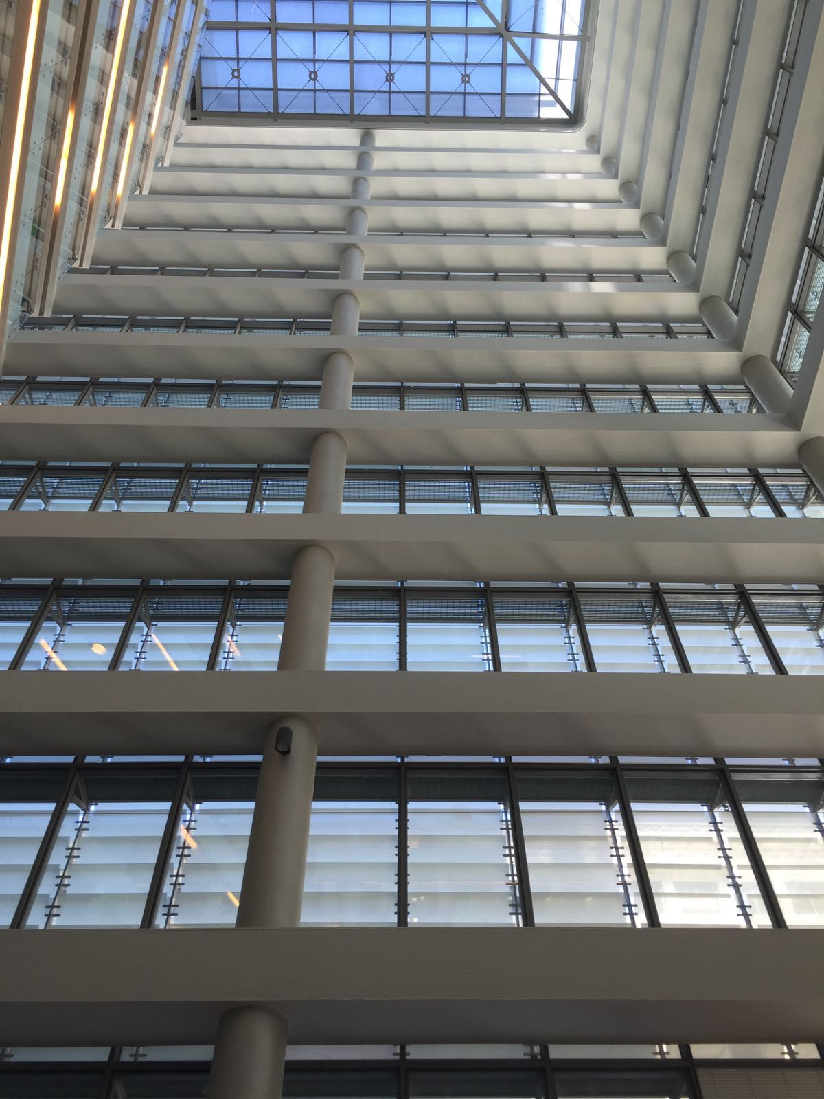 An Insider's Look at the Tel Aviv Stock Exchange